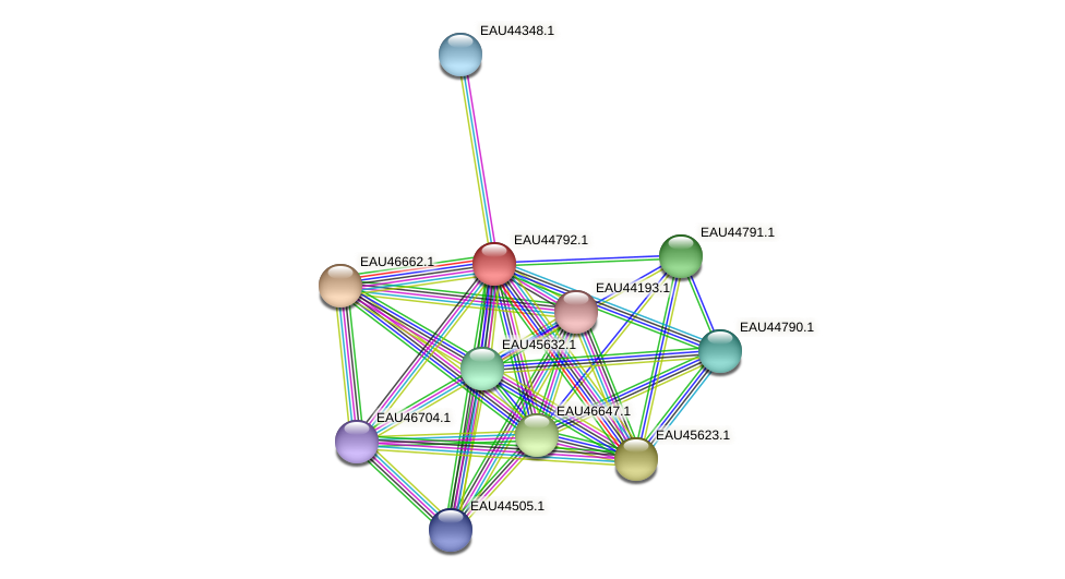 R2601_22152 protein (Pelagibaca bermudensis) - STRING interaction network