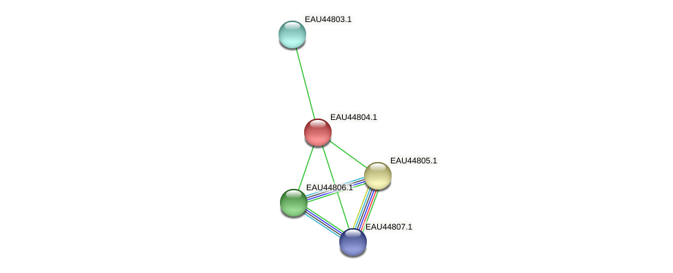 R2601_22212 protein (Pelagibaca bermudensis) - STRING interaction network