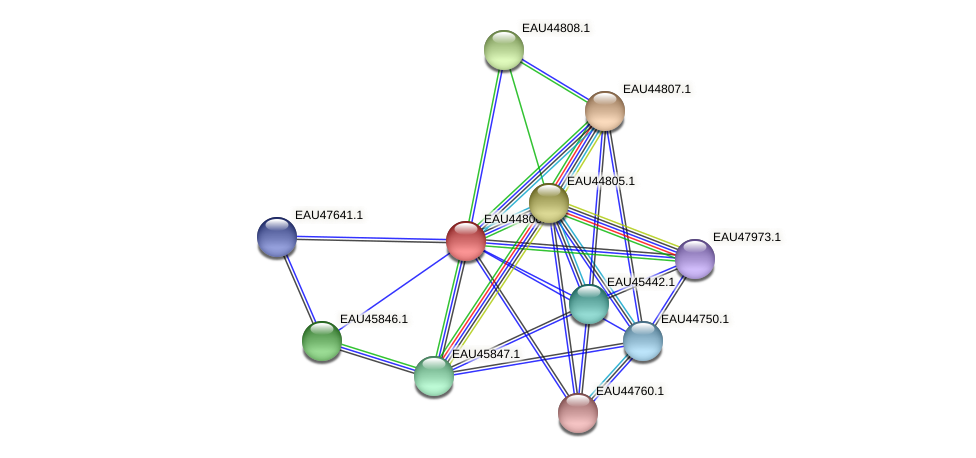 R2601_22222 protein (Pelagibaca bermudensis) - STRING interaction network