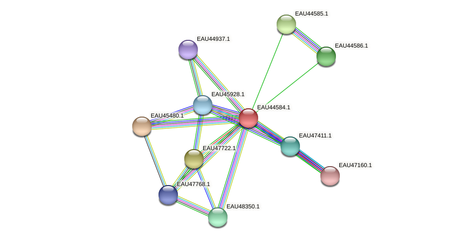 R2601_22387 protein (Pelagibaca bermudensis) - STRING interaction network