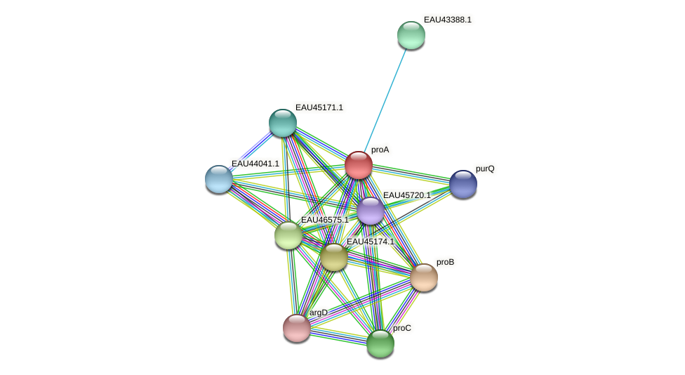 proA protein (Pelagibaca bermudensis) - STRING interaction network