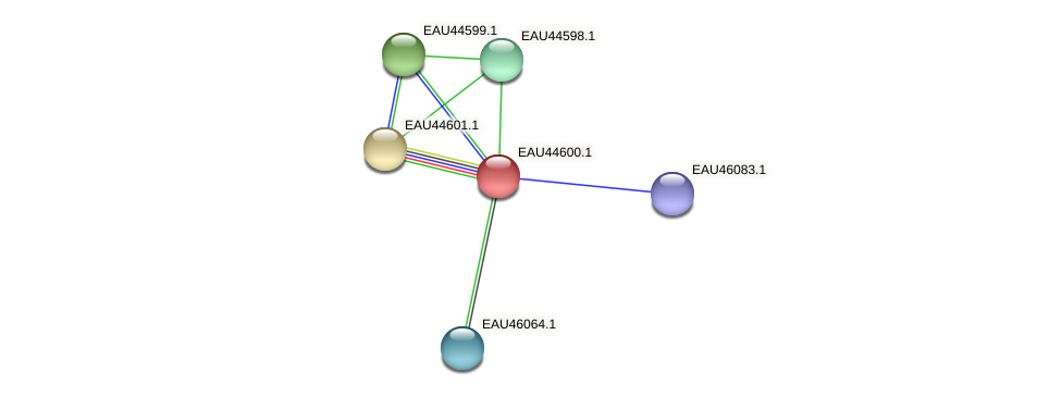 R2601_22467 protein (Pelagibaca bermudensis) - STRING interaction network