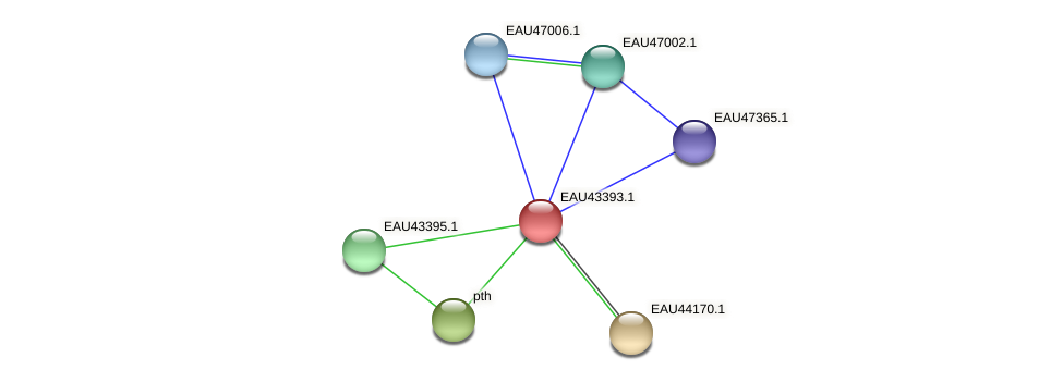 R2601_22571 protein (Pelagibaca bermudensis) - STRING interaction network