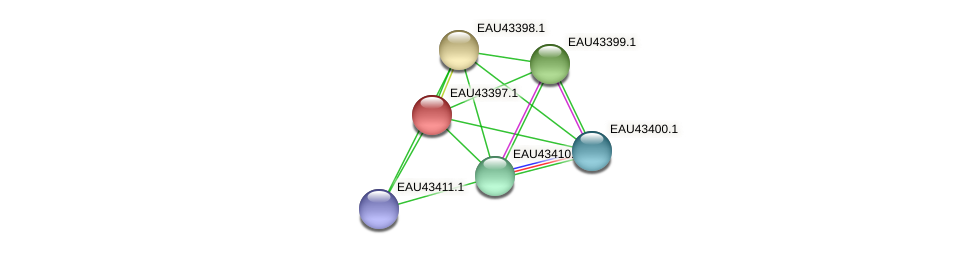 R2601_22651 protein (Pelagibaca bermudensis) - STRING interaction network