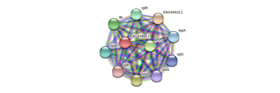 R2601_22666 protein (Pelagibaca bermudensis) - STRING interaction network
