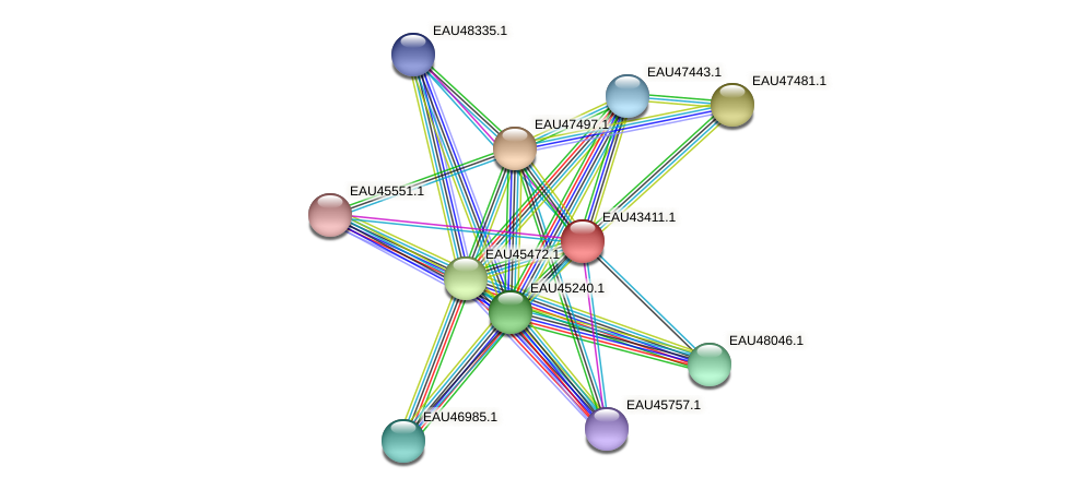 R2601_22676 protein (Pelagibaca bermudensis) - STRING interaction network