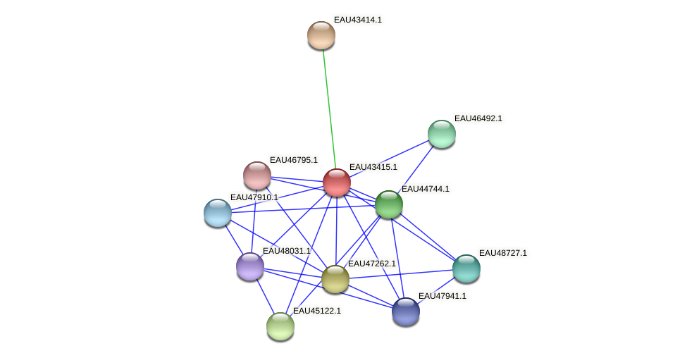 R2601_22696 protein (Pelagibaca bermudensis) - STRING interaction network