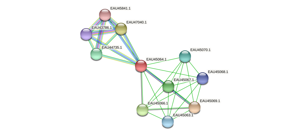 R2601_22796 protein (Pelagibaca bermudensis) - STRING interaction network
