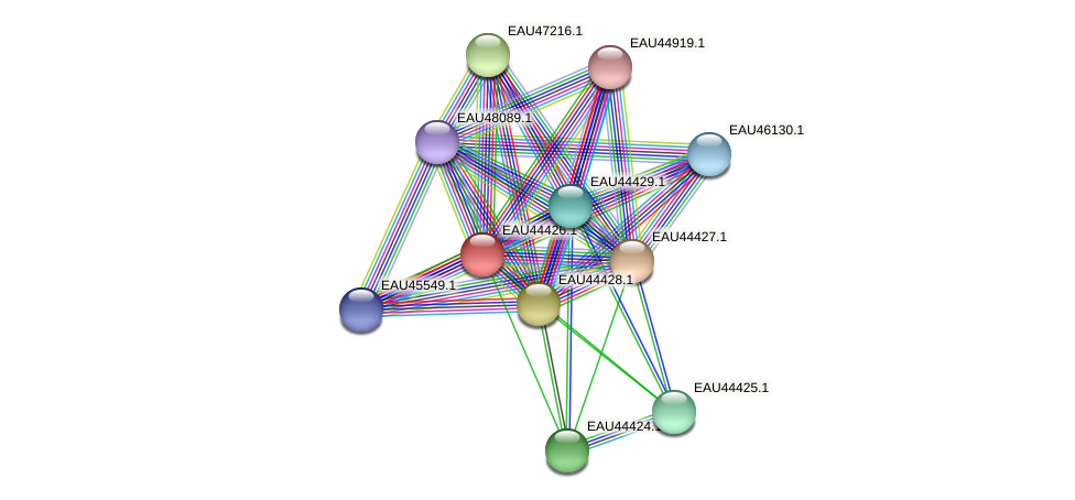 R2601_23153 protein (Pelagibaca bermudensis) - STRING interaction network