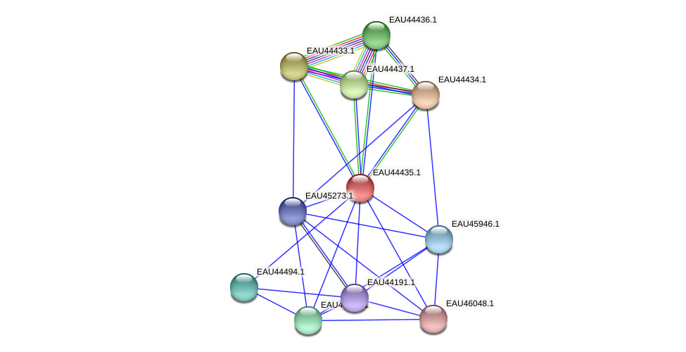 R2601_23198 protein (Pelagibaca bermudensis) - STRING interaction network