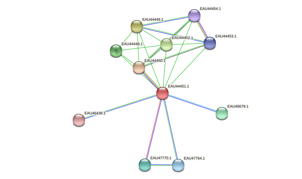 R2601_23278 protein (Pelagibaca bermudensis) - STRING interaction network