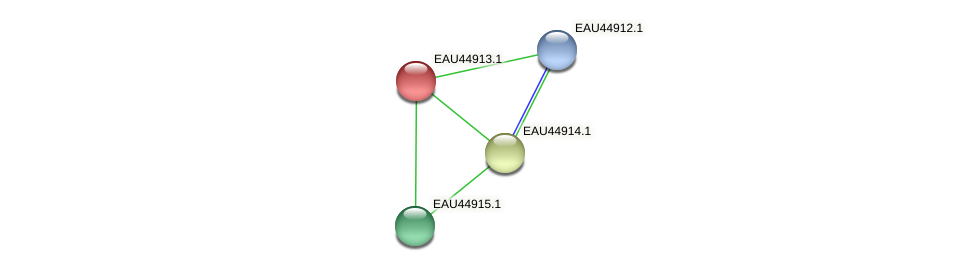 R2601_23665 protein (Pelagibaca bermudensis) - STRING interaction network