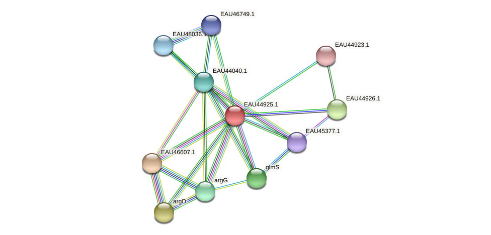 R2601_23725 protein (Pelagibaca bermudensis) - STRING interaction network