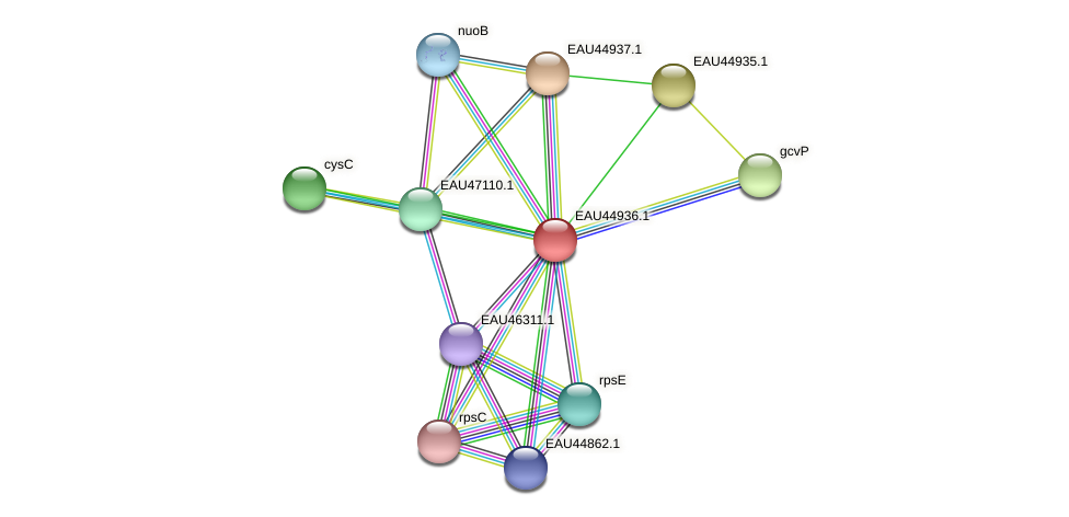 R2601_23780 protein (Pelagibaca bermudensis) - STRING interaction network