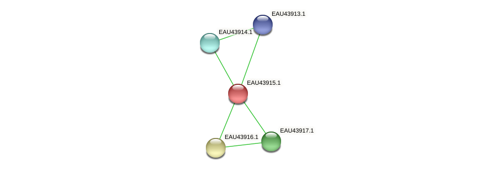 R2601_23890 protein (Pelagibaca bermudensis) - STRING interaction network