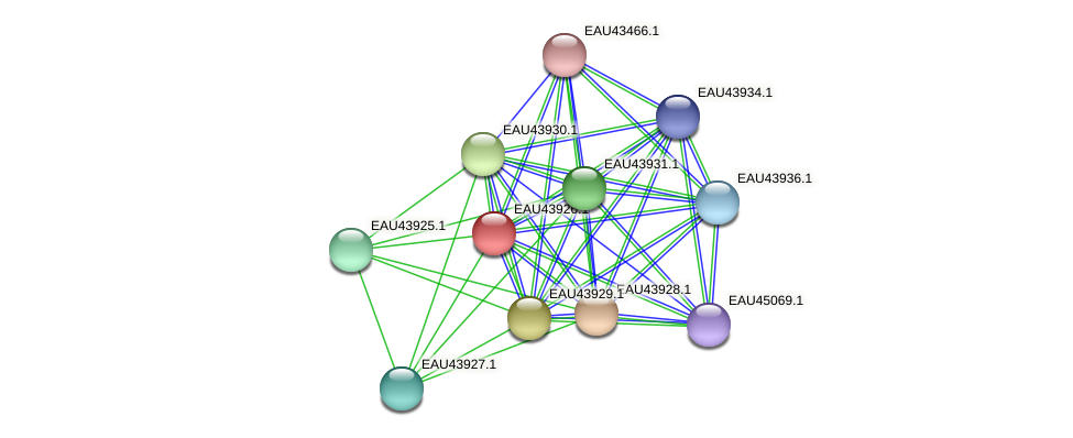 R2601_23945 protein (Pelagibaca bermudensis) - STRING interaction network