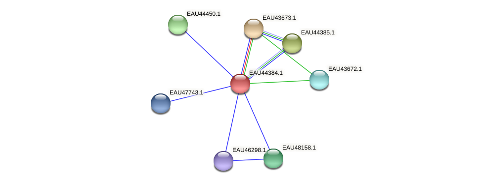 R2601_25581 protein (Pelagibaca bermudensis) - STRING interaction network