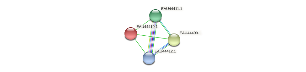 R2601_25711 protein (Pelagibaca bermudensis) - STRING interaction network