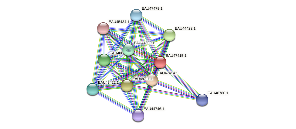 R2601_25791 protein (Pelagibaca bermudensis) - STRING interaction network