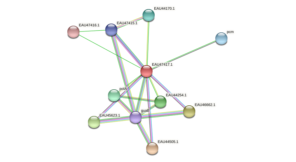 R2601_25801 protein (Pelagibaca bermudensis) - STRING interaction network