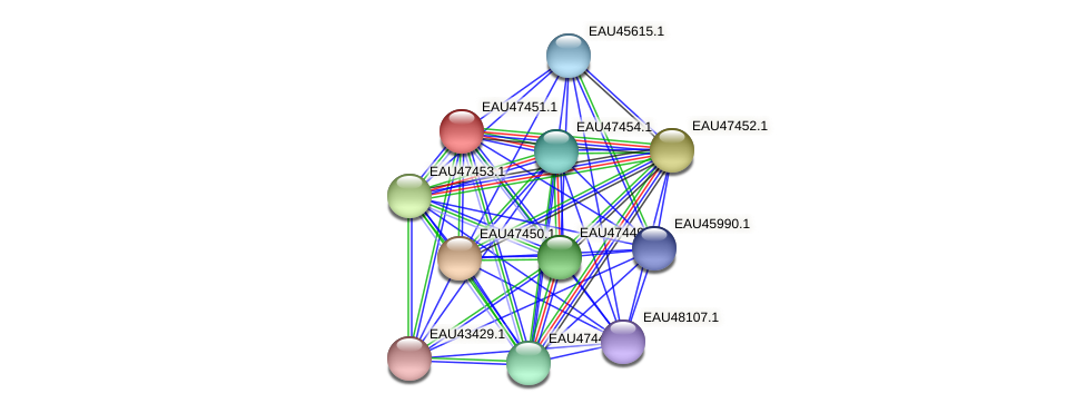 R2601_25971 protein (Pelagibaca bermudensis) - STRING interaction network
