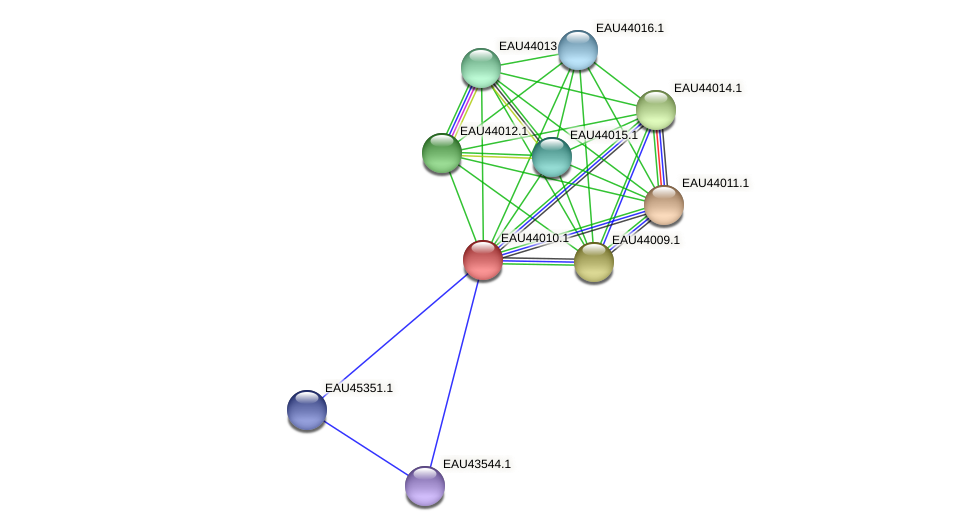 R2601_26556 protein (Pelagibaca bermudensis) - STRING interaction network