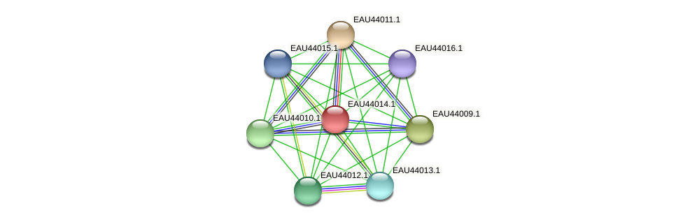 R2601_26576 protein (Pelagibaca bermudensis) - STRING interaction network
