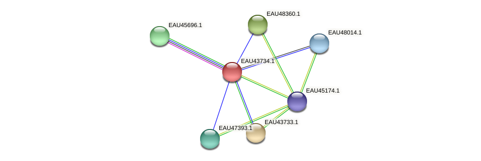R2601_26786 protein (Pelagibaca bermudensis) - STRING interaction network