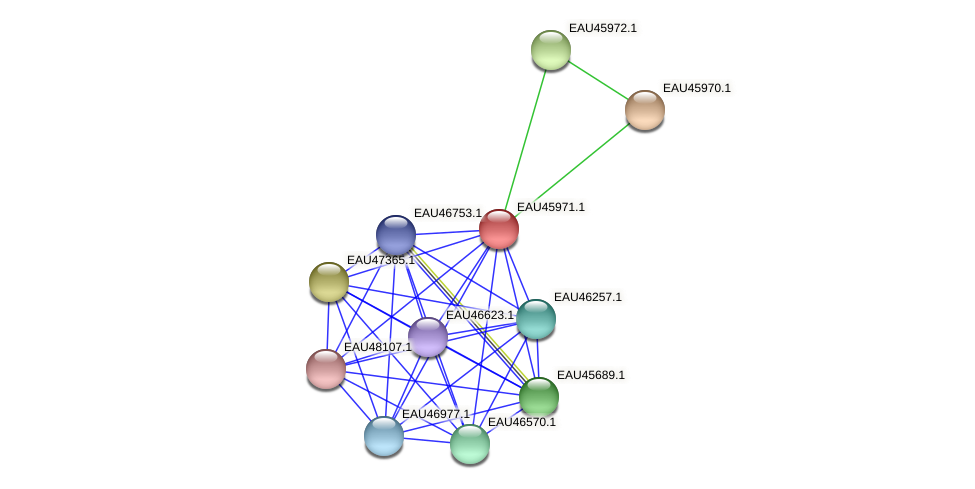 R2601_26896 protein (Pelagibaca bermudensis) - STRING interaction network