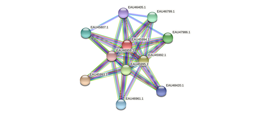 R2601_27011 protein (Pelagibaca bermudensis) - STRING interaction network