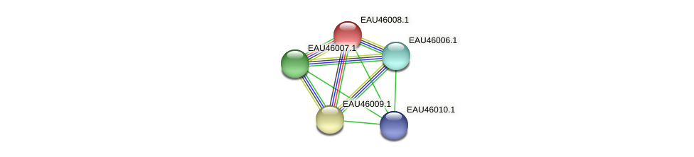 R2601_27081 protein (Pelagibaca bermudensis) - STRING interaction network