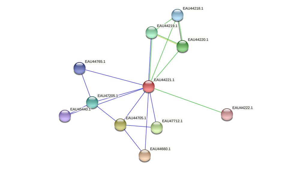 R2601_27298 protein (Pelagibaca bermudensis) - STRING interaction network