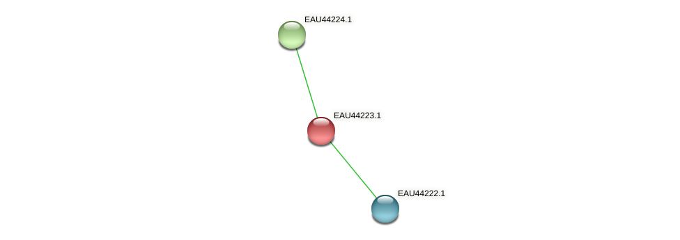 R2601_27308 protein (Pelagibaca bermudensis) - STRING interaction network