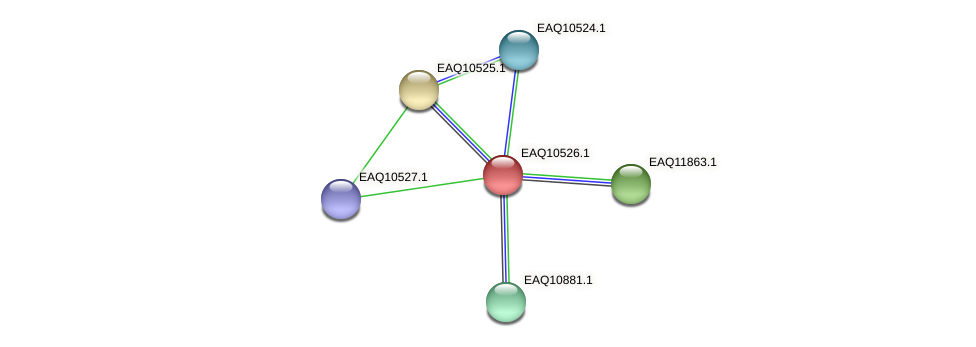 RB2654_00015 protein (Maritimibacter alkaliphilus) - STRING interaction network