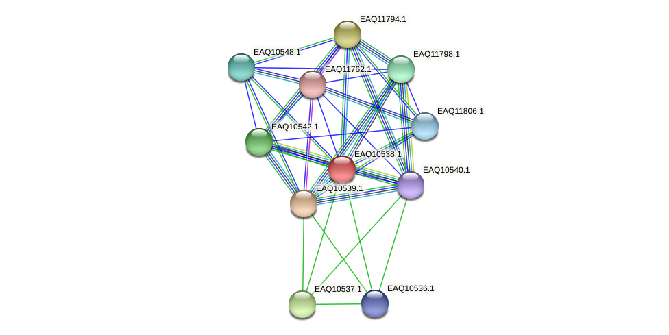 RB2654_00075 protein (Maritimibacter alkaliphilus) - STRING interaction network