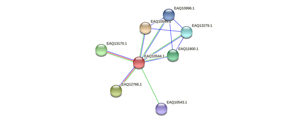 RB2654_00105 protein (Maritimibacter alkaliphilus) - STRING interaction network