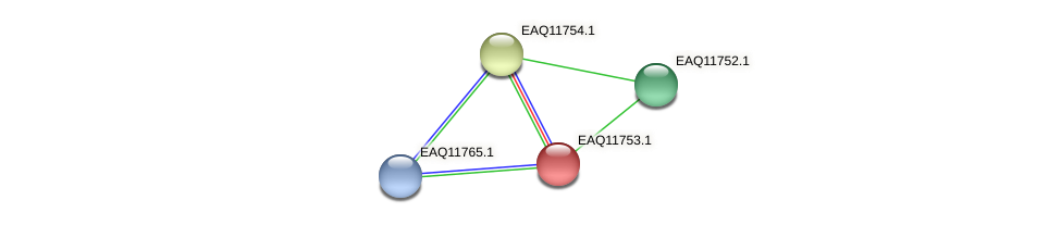 RB2654_00165 protein (Maritimibacter alkaliphilus) - STRING interaction network