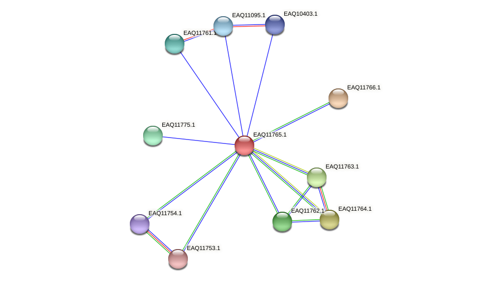 RB2654_00225 protein (Maritimibacter alkaliphilus) - STRING interaction network