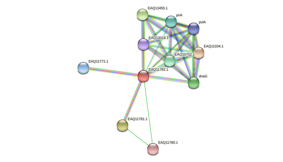 RB2654_00310 protein (Maritimibacter alkaliphilus) - STRING interaction network