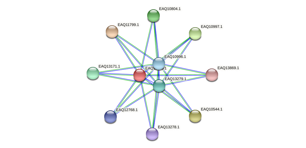 RB2654_00400 protein (Maritimibacter alkaliphilus) - STRING interaction network