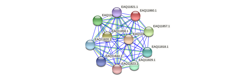 RB2654_00700 protein (Maritimibacter alkaliphilus) - STRING interaction network