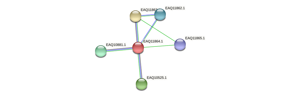 RB2654_00720 protein (Maritimibacter alkaliphilus) - STRING interaction network