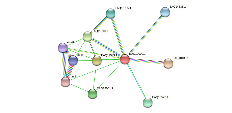 RB2654_00820 protein (Maritimibacter alkaliphilus) - STRING interaction network