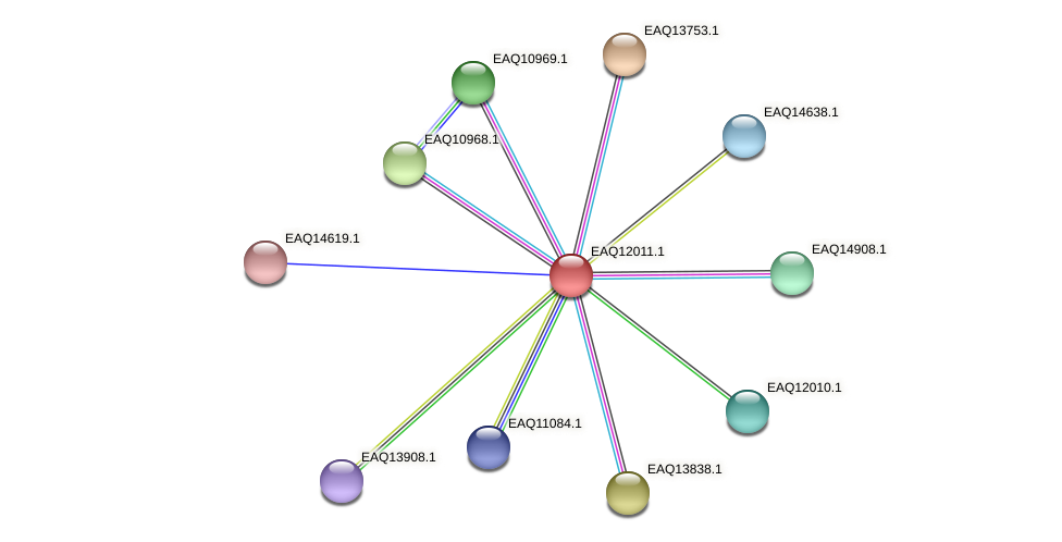 RB2654_00875 protein (Maritimibacter alkaliphilus) - STRING interaction network