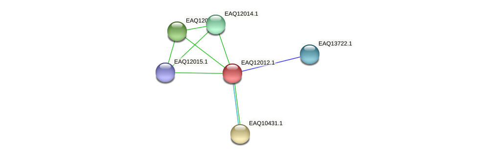 RB2654_00880 protein (Maritimibacter alkaliphilus) - STRING interaction network