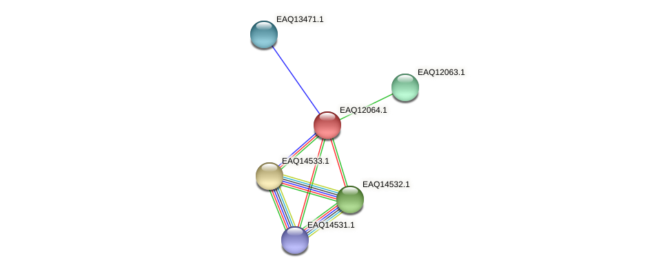 RB2654_01140 protein (Maritimibacter alkaliphilus) - STRING interaction network