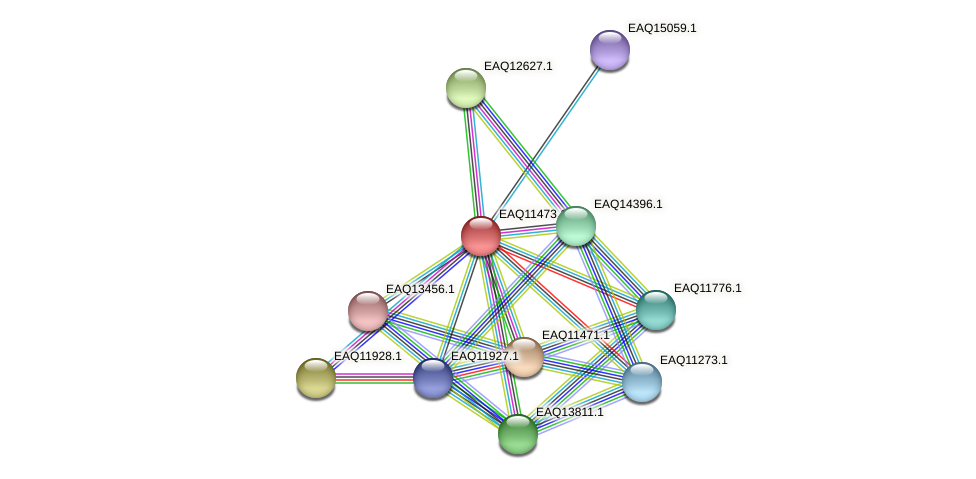 RB2654_01890 protein (Maritimibacter alkaliphilus) - STRING interaction network