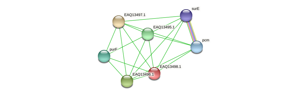 RB2654_02254 protein (Maritimibacter alkaliphilus) - STRING interaction network