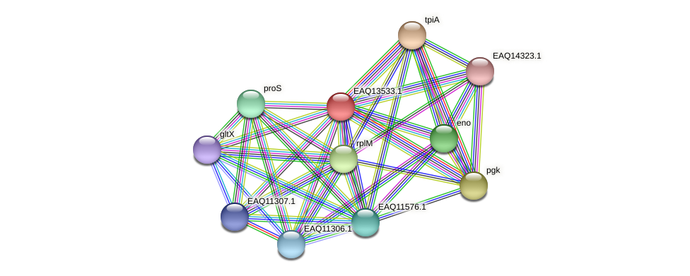 RB2654_02429 protein (Maritimibacter alkaliphilus) - STRING interaction network