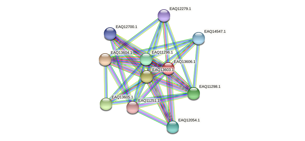 RB2654_02794 protein (Maritimibacter alkaliphilus) - STRING interaction network